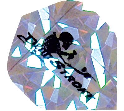Dead Stroke Skeleton 2D/3D Flight
