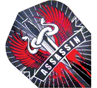 Assassin 2D/3D Flight