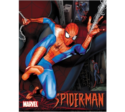 Spiderman Metal Sign