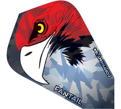 Eagle Fantail Flight