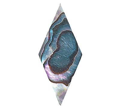 DIAMOND ABALONE