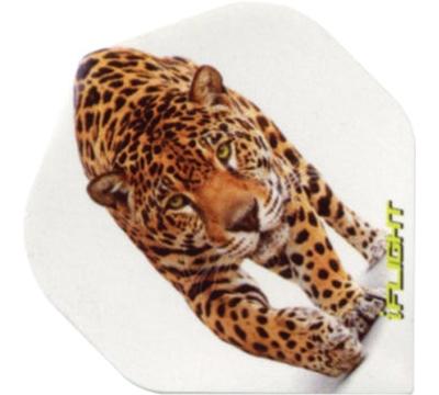 i-Flight Leopard Standard Flight