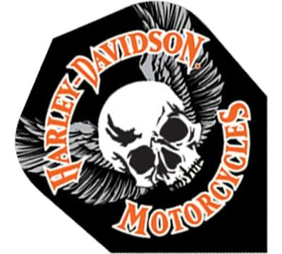 Harley-Davidson® Wing Skull Standard Flight