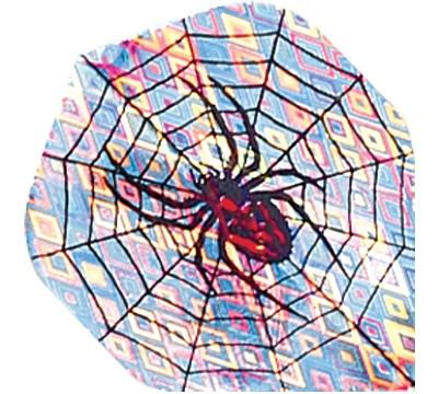 Spider in Web 2D/3D Flight