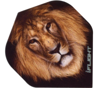 i-Flight Lion Standard Flight