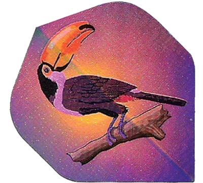 Toucan 2D/3D Flight