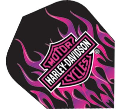 Harley-Davidson® Pink Flames Standard Flight