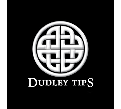 Dudley Cue Tips – 13mm