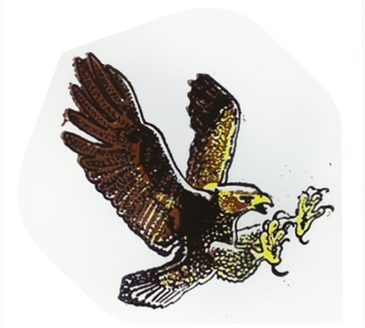 Eagle Hard Poly Flight
